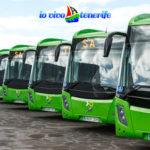 italia tenerife flotta di autobus