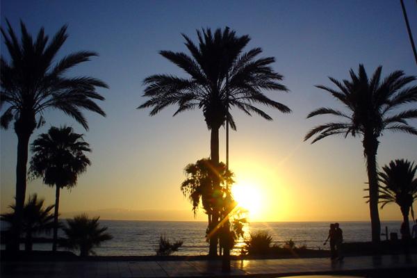 Spiagge Tenerife sud: El Camison, Troya e Las Americas