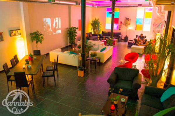 Cannabis Club a Tenerife: come aprirne uno