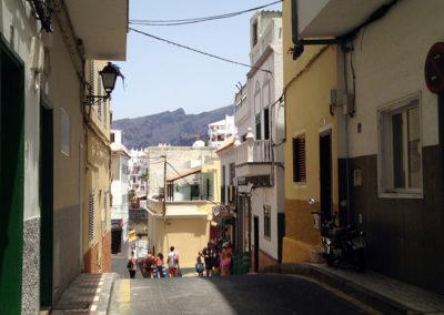Turismo Puerto Santiago (11)