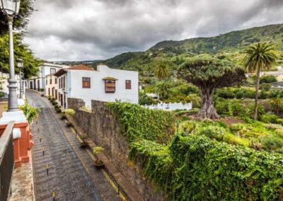 Turismo Icod de los Vinos (3)