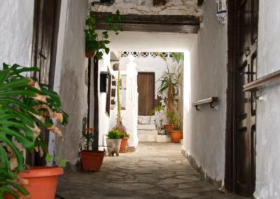 Turismo San Juan de la Rambla (11)