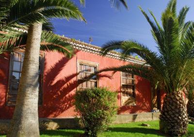 Turismo Tegueste (16)
