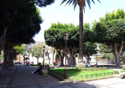 Turismo La Laguna (25)