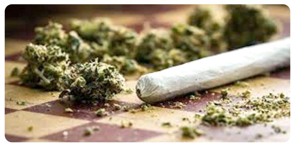 cannabis club tenerife