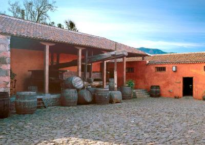 Turismo El Sauzal (21)